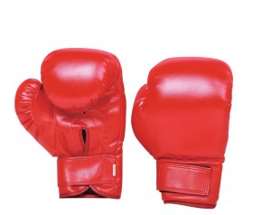 BOXING GLOVES JY9103